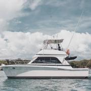 33FT Cruiser SG